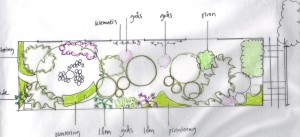 växtplan